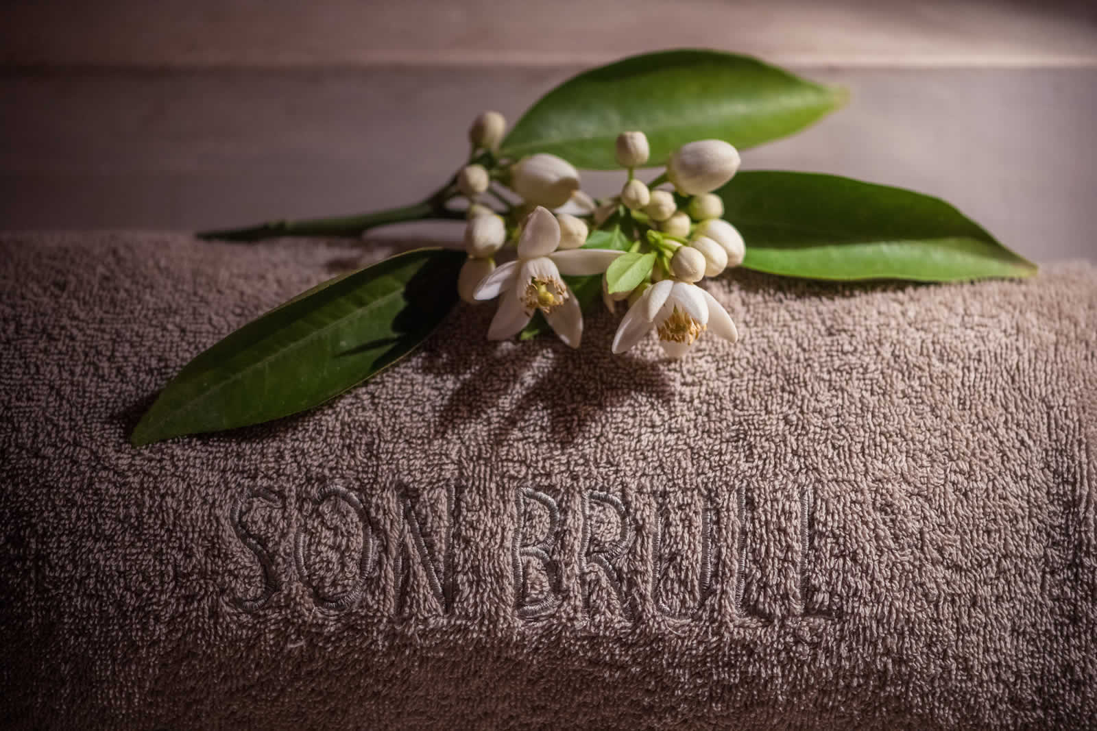 Hotel Son Brull Spa Hot Stones Massage